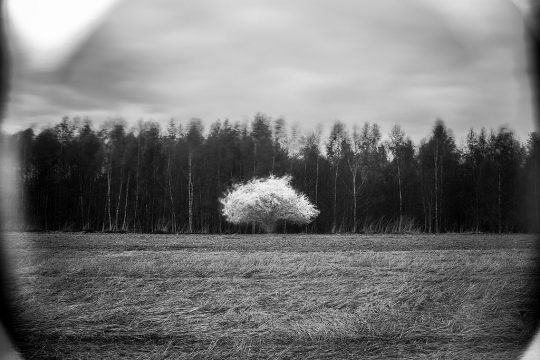 Špatný fotografický filtr | moje Tajemno