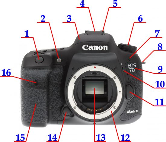 Canon EOS 7D Mark II zepředu | ovládněte svojí zrcadlovku | moje Tajemno