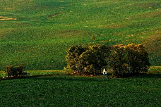Fotografování krajin | kaplička v polích | Milan Vurm | moje Tajemno